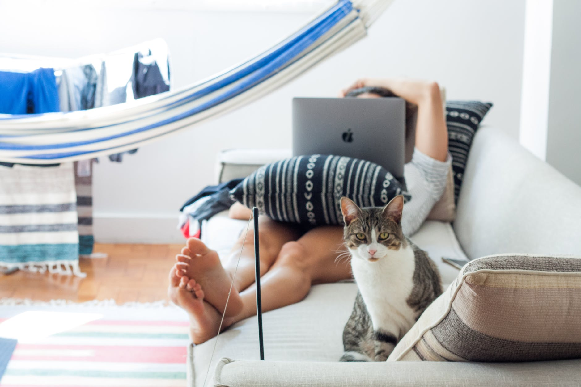 woman lying on sofa with cat in her foot