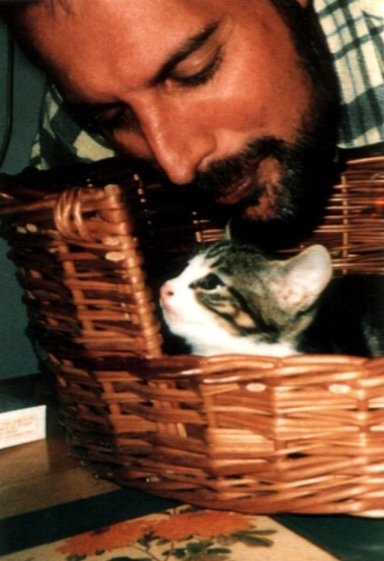 freddie-mercury-with-cats-164112984484668844087.jpg
